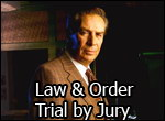 Law & Order : Trial by Jury